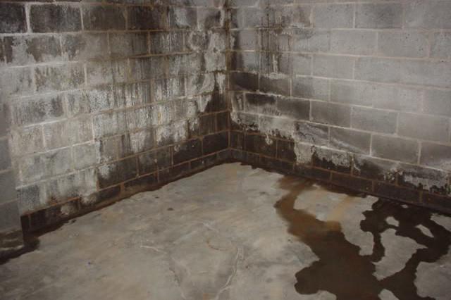 Что делать если вода попадает в подвал