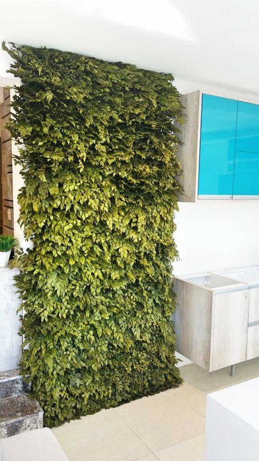 Как сделать стену из живых растений в квартире своими руками