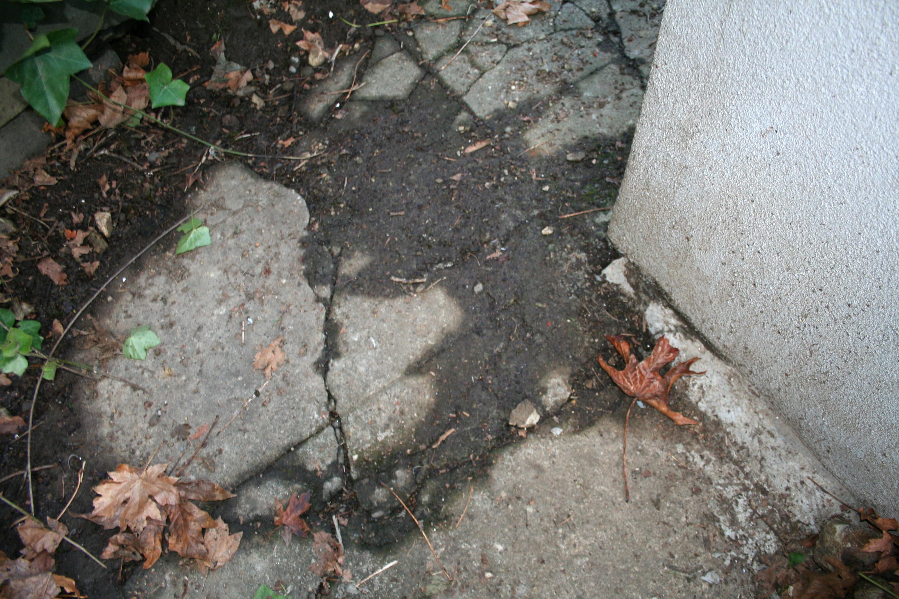 Как устранить проникновение воды в подвал дома и гаража