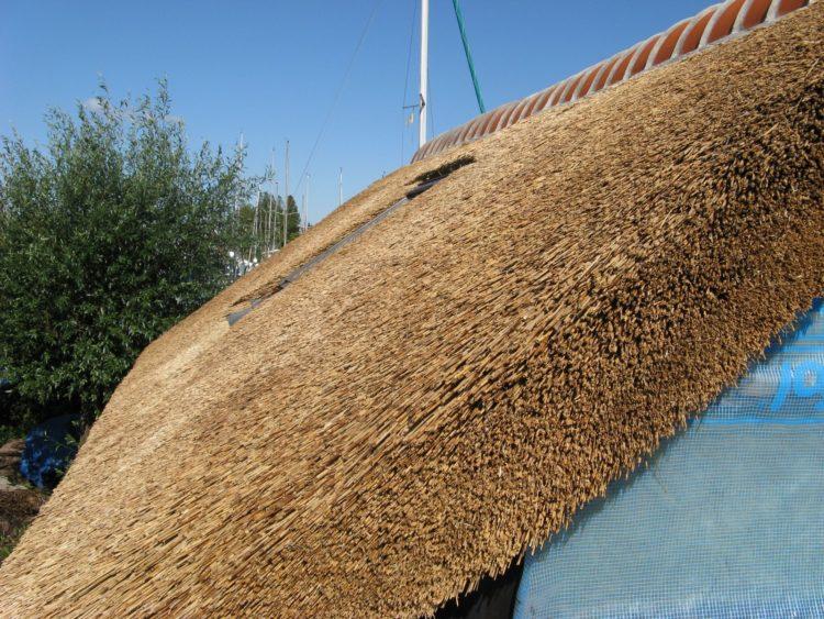 крыша из камышового покрытия