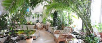 строительство зимнего сада в частном доме